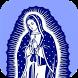 Hermosa Virgen de Guadalupe by Sfo Apps