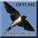 Suara Panggil Burung Walet Mp3 by Smanxar Studio