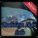 Budidaya Ikan Lele Lengkap by TMF Studio