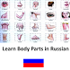 Learn Body Parts in Russian by Muratos Games