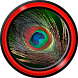 Feather Live Wallpapers by Cool Free Live Wallpapers