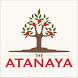 BALI HOTEL The Atanaya by Bamboomedia