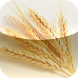 E-Food Storage by On Demand Software, Inc.