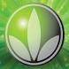 Vida Verde by DidRom
