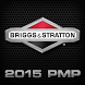 2015 Briggs & Stratton PMP by Anthologie