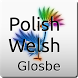 Polish-Welsh Dictionary by Glosbe Parfieniuk i Stawiński s. j.