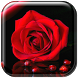 Scarlet Rose Live Wallpaper by Cuteness Inc.