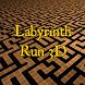 Labyrinth Run 3D by Palii