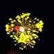 FireWorks Diwali by RBInteractive