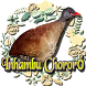 Canto do Inhambu Chororó by Raja Burung App