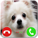 Talking Dog Call Prank by yoni app