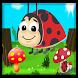 ladybird beetle run by Salahdev
