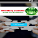 Monetary Solution by NxtVision