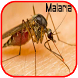 Malaria Disease Problem by Pondok Volamedia