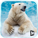 Angry Polar Bear Simulator 3D by MAS 3D STUDIO - Racing and Climbing Games