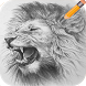 How to Draw Lion