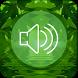 Relax Forest Sounds Nature by selamatdanberkah