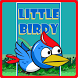 Little Birdy by Appspoint