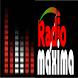 Radio Maxima 91.5