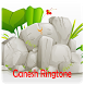 Ganesh Ringtone & Wallpaper by Fireball Technologies