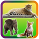 Wild Animals Pictures Puzzle by Oulkids