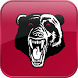 Burleigh Bears by Alive Corporation Pty Ltd