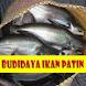 Cara Budidaya Ikan Patin by GoReading