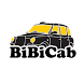 BiBiCab водитель by HiveTaxi™