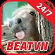 BeatVN : Video by Hot Media