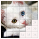 Puzzles and Guess the Breed of Cats by Maths-and-Games Soft