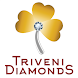 Triveni Diamonds by V1 Technologies Limited