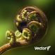 Vector: Te Kete Tikanga Māori
