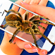 Spider Camera Scary Prank by GoodStoryApps