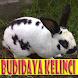 Budidaya Kelinci Untuk Pemula by GoReading