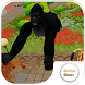 Angry Gorilla Simulator by socibox