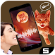 Cat Translator Simulation by Soft Global Solutions