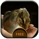 Hamster Live Wallpaper by Phone Decoration