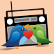 Radio Heart - Blog Radio by VinaZen