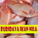 Cara Budidaya ikan nila by GoReading