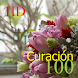100 Curación HD by KenMac Holdings Limited