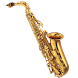 Vishal Brass Band by Tech Global