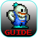 guide for SNOW BROS by 013 ARCADES