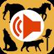 Top Animal Sounds by De Concat