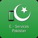 E-Services Pakistan by TechRabbits
