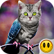 Simulator Morph Animal by Smile Apps And Games