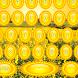 Sunrise Keyboards by Keyboards Gama