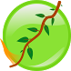 Time The Vine by NailBuster Software Inc.