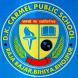 DK CARMEL PUBLIC SCHOOL BIHIYA by VITANA PRIVATE LIMITED