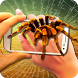 Spider on Hand. Camera Prank by GoodStoryApps