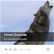 Howl Sounds by SoundsLabStudio
